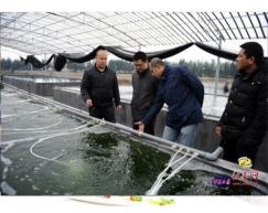 养殖水消毒净化